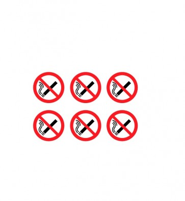 No Smoking Icon (BDSS02)